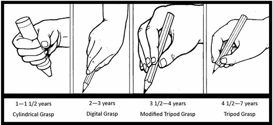 Stages of hand writing grip development